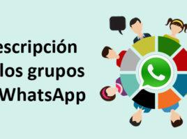 descripción en los grupos de whatsapp
